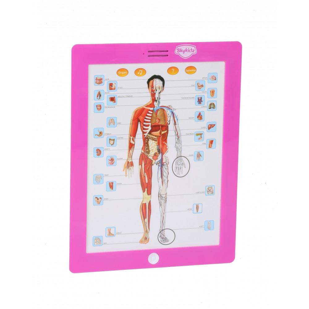 Mitashi Sky Kidz Anatomy Learning Pad