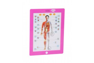 Mitashi Sky Kidz Anatomy Learning Pad